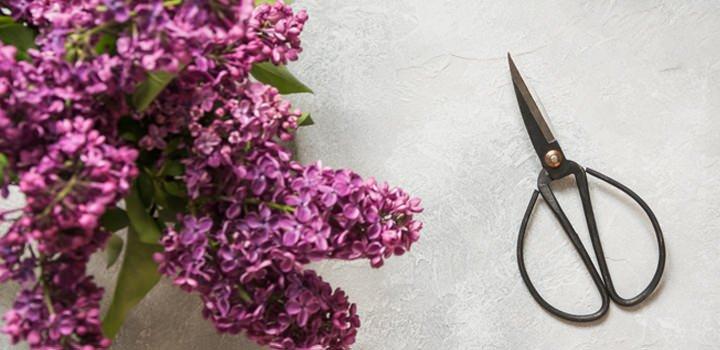 scharen voor tuin en bloemen